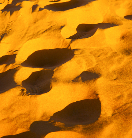 inclined: the brown sand dune in the sahara morocco desert