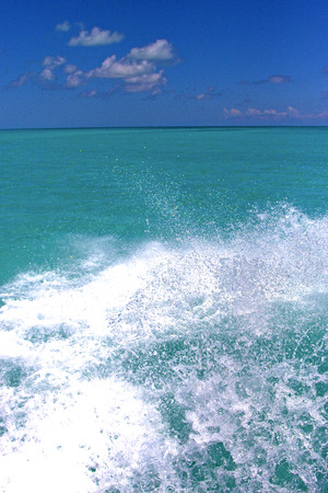 ground in mexico froath and blue  foam  the sea drop sunny day Banque d'images