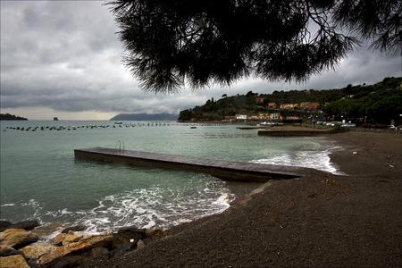 water coastline and autumn in porto venere  italy