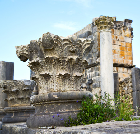 volubilis: volubilis in morocco africa the old roman deteriorated monument and site Editorial