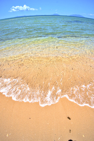 be wet: paradise beach seaweed in indian ocean nosy be  madagascar  sand isle  sky and foam