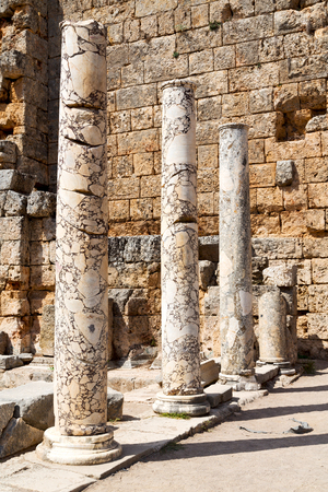 templo romano: old construction in asia turkey the column  and the roman temple