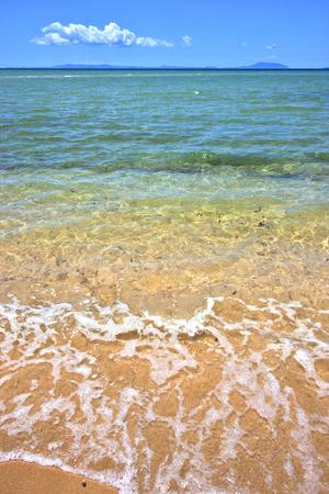 be wet: beach seaweed in indian ocean nosy be  madagascar  sand isle  sky and foam
