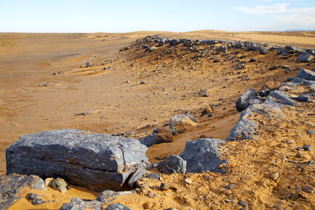 petrified fossil: old fossil in  the desert of morocco sahara and rock  stone    sky