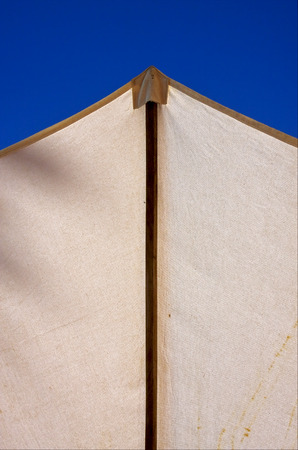 nosy: abstract parasol and blue sky in madagascar nosy be