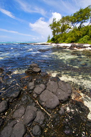 footstep: blue bay foam footstep indian ocean some stone in the island of deus cocos in mauritius