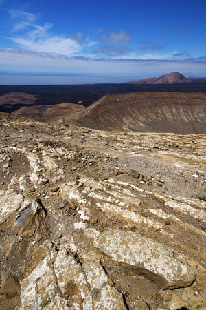 playa blanca: timanfaya vulcanic  rock stone sky  hill and summer in los volcanes lanzarote spain plant flower bush