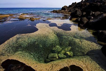 musk pond rock stone sky  water  coastline and summer in lanzarote spain