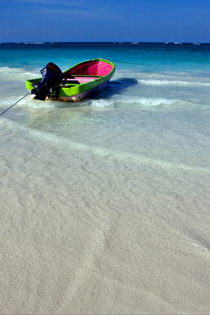 navigable: tropical lagoon boat navigable  froth cloudy  sea weed  and coastline in mexico playa del carmen