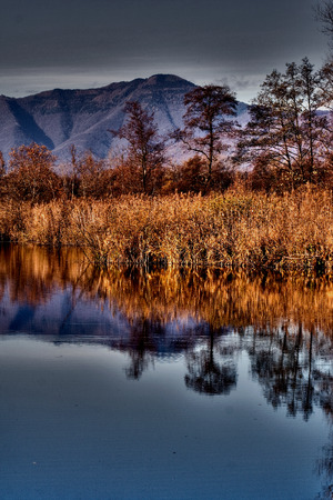 marshy: abstract autumn lake and marsh moor marshy  in the north of italy Stock Photo