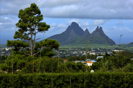 aux: cloudy mountain plant tree and hill in trou aux cerfs mauritius