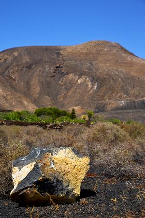 timanfaya: volcanic timanfaya  rock stone sky  hill and summer in los volcanes lanzarote spain plant flower bush