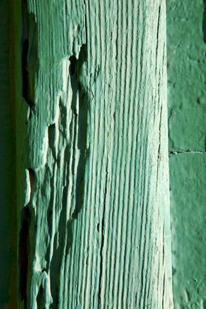 lanzarote: texture in spain lanzarote abstract green  window