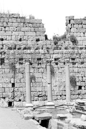 templo romano: old construction in asia turkey the column  and the roman temple
