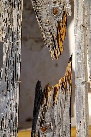 lanzarote: texture in spain lanzarote abstract green brown window