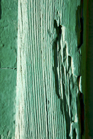 grudge: texture in spain lanzarote abstract green  window