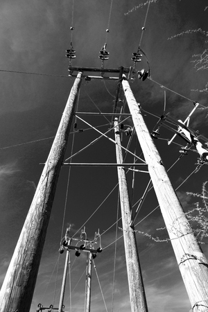 voltage gray: wood pylon energy and current line   in oman the electric cable