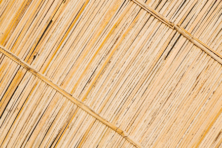 oman background: abstract   texture of a bamboo wall background in oman Stock Photo