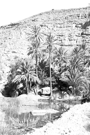 bani: oman old mountain and water in canyon wadi oasi nature paradise
