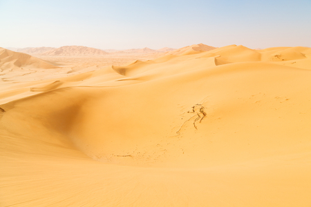to rub: the empty quarter  and outdoor  sand  dune in oman old desert rub al khali