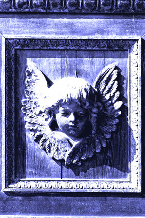 putto: abstract angel   texture of a     brown  antique wooden     old door