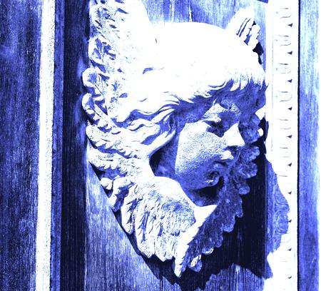 abstract angel   texture of a     brown  antique wooden     old door
