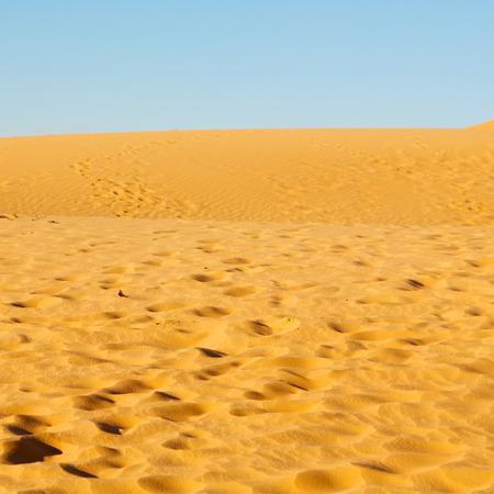 the empty quarter  and outdoor  sand  dune in oman old desert rub al khali