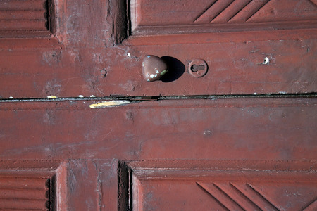 distort: brass brown knocker and wood  door vinago  varese italy