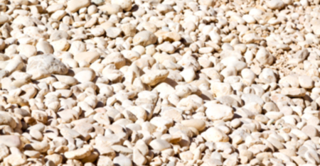 oman background: in the white and gray oman      dry bush rock alone blurred Stock Photo