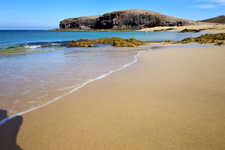 froth: people water in lanzarote coastline  froth  spain pond  rock stone sky cloud beach   musk  and summer Stock Photo