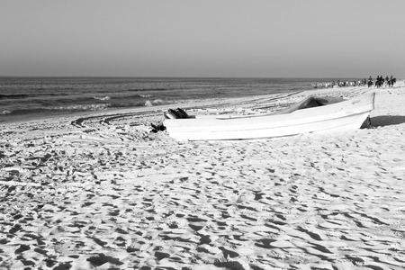 and seagull near ocean in oman boat in the coastline Stock Photo