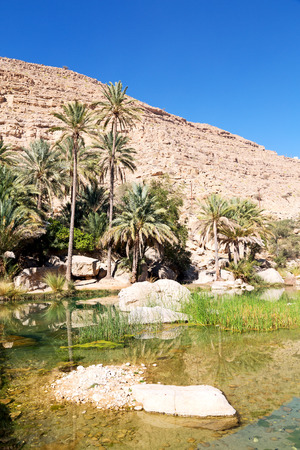 oman old mountain and water in canyon wadi oasi nature paradise