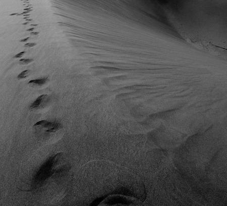 to rub: the empty quarter and outdoor  sand dune in oman old desert rub al khali Stock Photo