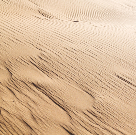 sandy soil: abstract texture line wave in oman the old desert  and the empty quarter