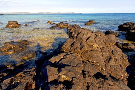 madagascar    andilana beach seaweed in indian ocean  sand isle  sky and rock