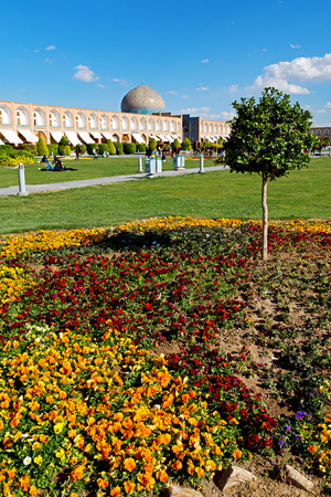 iran   the old square of isfahan prople garden tree heritage tourism and mosque