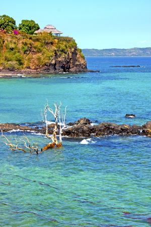 beautiful andilana beach seaweed in indian ocean madagascar mountain   sand isle  sky and rock