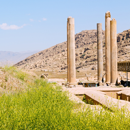 fars: in iran persepolis the old  ruins historical destination monuments and ruin