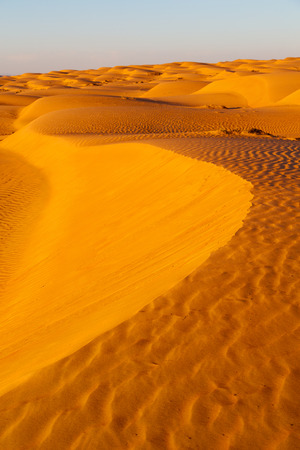 the empty quarter  and outdoor  sand  dune in oman old desert rub al khali  Stock Photo