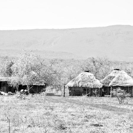 blur  in lesotho malealea street  village near courtyard  and coultivation field