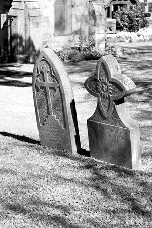 christian halloween: blur  in  south africa  cape town antique  grave cemetery cross stone and grass Stock Photo