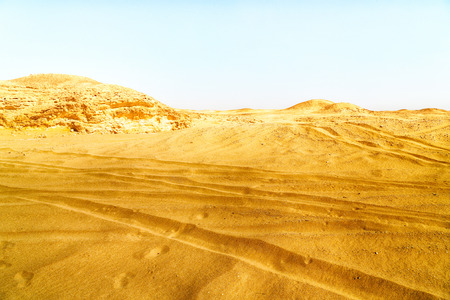 oman background: the empty quarter  and outdoor     sand   dune in oman old desert rub   al khali