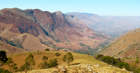 blur in swaziland     mlilwane wildlife  nature  reserve mountain and tree Stock Photo