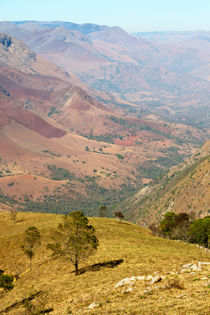 fissure: blur in swaziland     mlilwane wildlife  nature  reserve mountain and tree Banque d'images