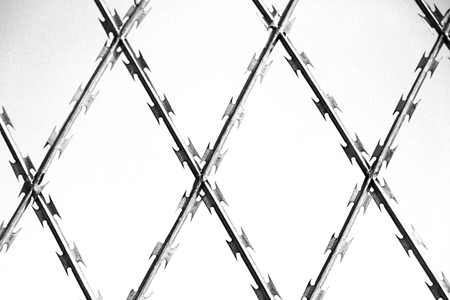 intrusion: abstract razor wire in the clear sky like background texture