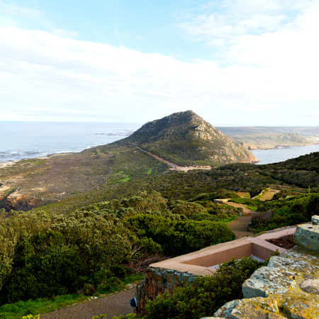 table mountain national park: blur     in south africa coastline cape of good hope  and natural park reserve