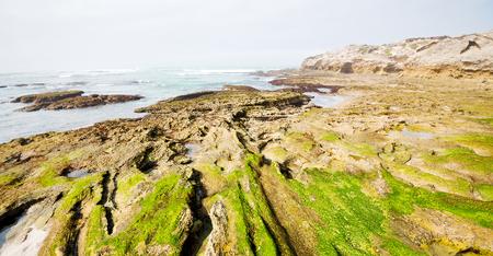 blur in south africa   sky ocean  de hoop reserve nature and rocks