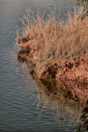 in lesotho mlilwane wildlife santuary the pound lake and  tree reflection in water
