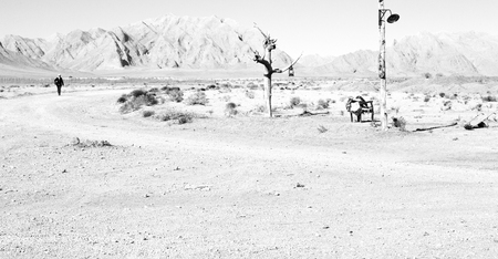 chair in iran blur old dead tree in the empty desert of persia lamp oil on branch Stock Photo