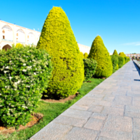 Sheikh: blur in iran   the old square of isfahan prople garden tree heritage tourism and mosque